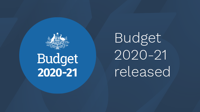 Budget 2020-21 released